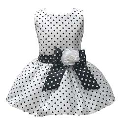 Polka Dot Flower Girl Dresses