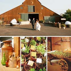 Elegant country barn wedding decorations ideas on the cheap barn wedding decorations junglespirit Images