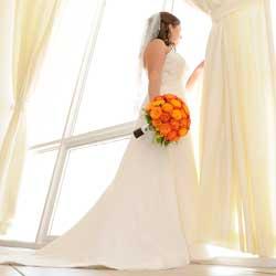 Discount Plus Size Wedding Dresses